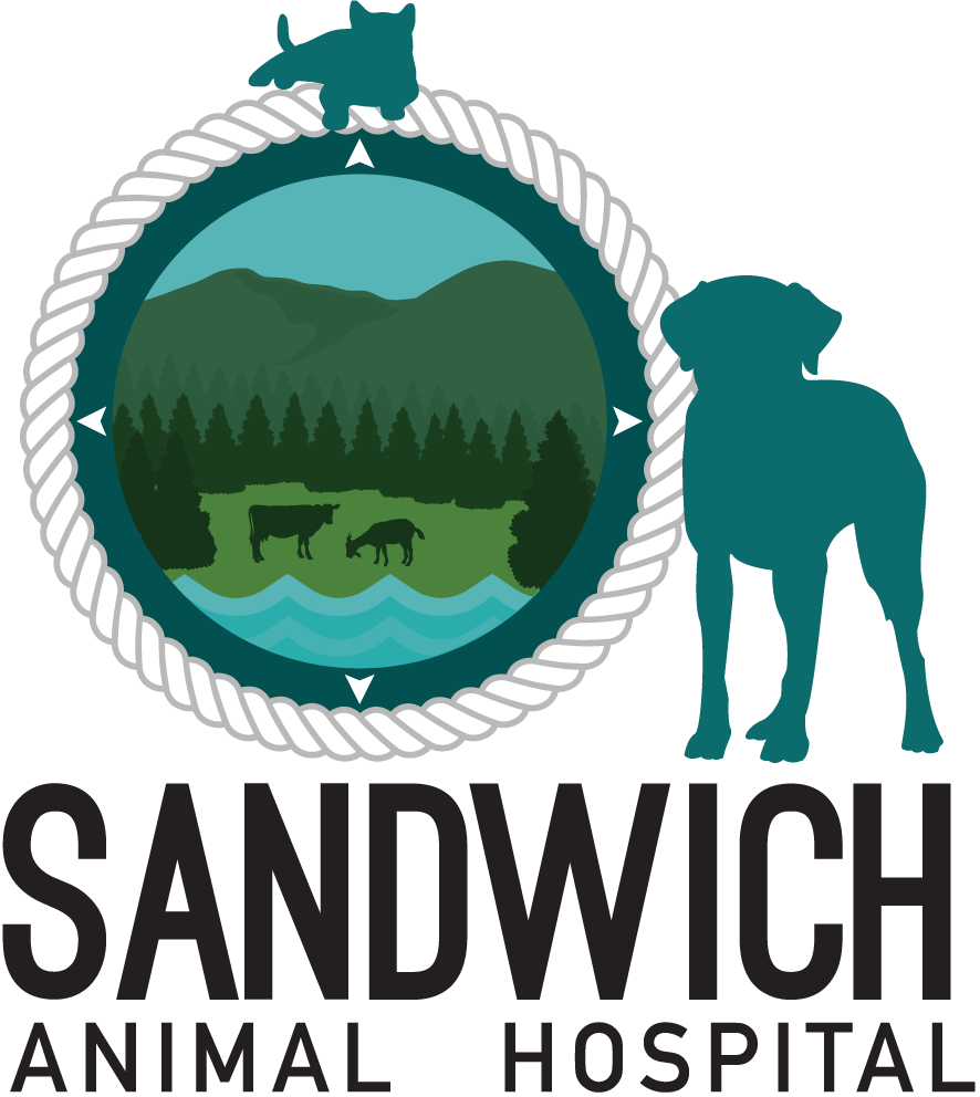 Sandwich Animal Hospital – New Hampshire
